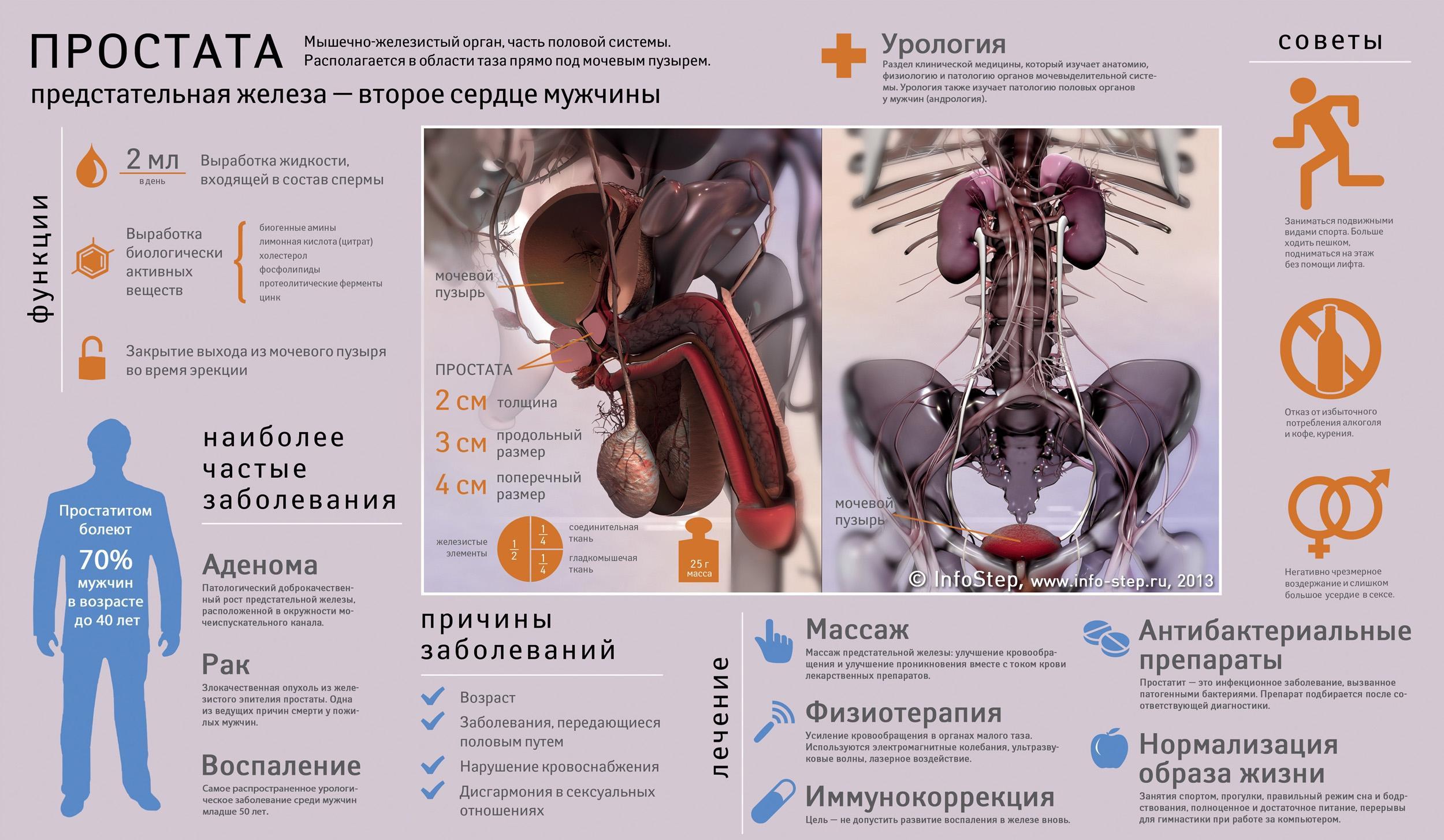 Эффективное лечение простатита, лечение аденомы, препараты 31