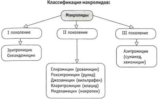 Классификация макролидов