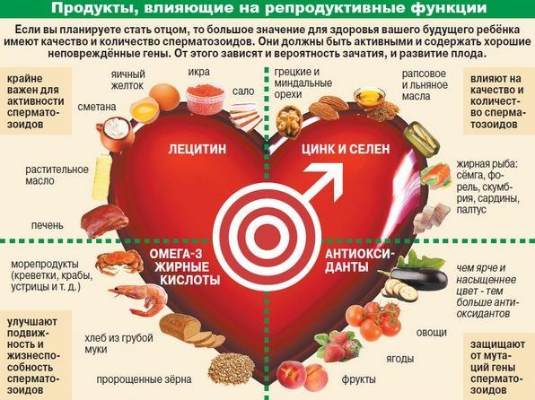 Продукты влияющие на репродуктивные функции у мужчин