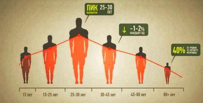 Изменение уровня тестостерона в зависимости от возраста