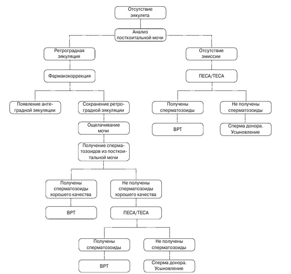 Схема лечения бесплодия, вызванного ретроградной эякуляцией (ВРТ – вспомогательные репродуктивные технологии, ПЕСА, ТЕСА – методы пунктирования яичка)