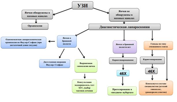 Диагностическая схема при непрощупываемых яичках (согласно Федеральным клиническим рекомендациям)