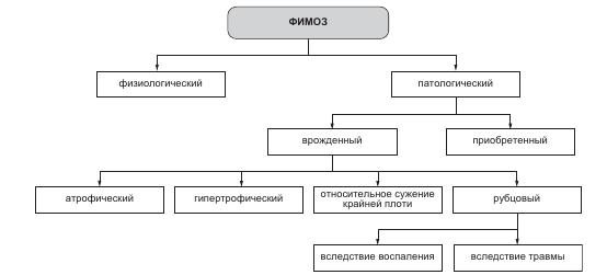 Классификация фимоза