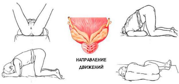 Позы для проведения процедуры