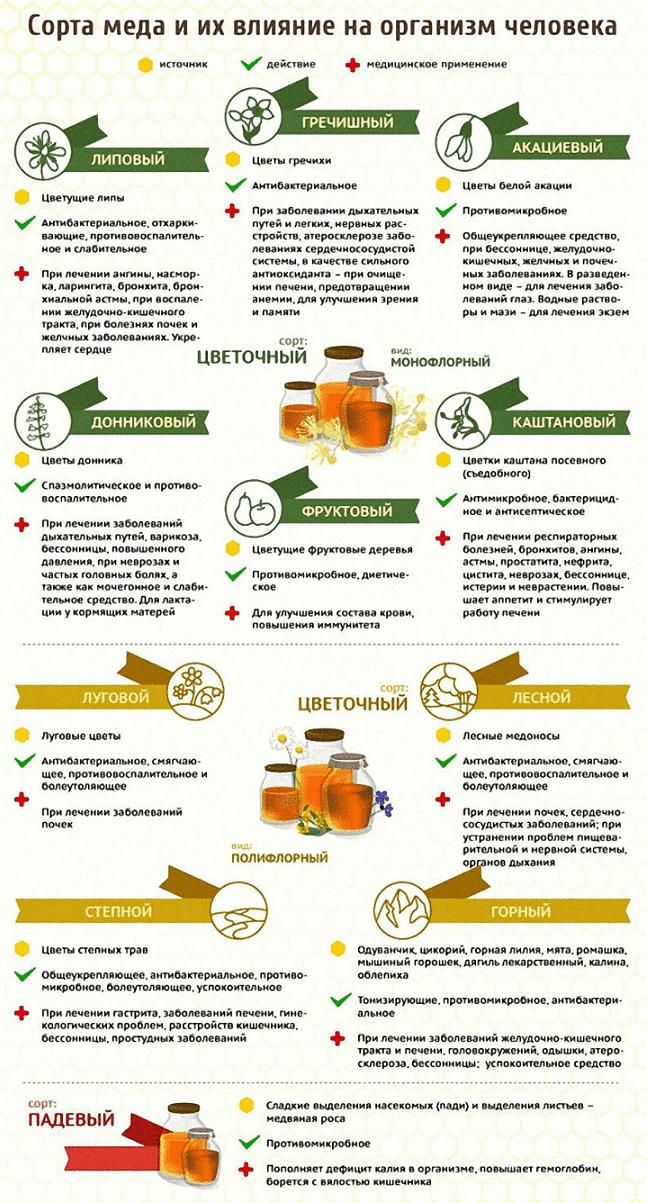 Сводная таблица различных видов меда и их свойств