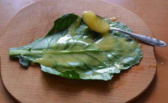 Капустный лист с медом
