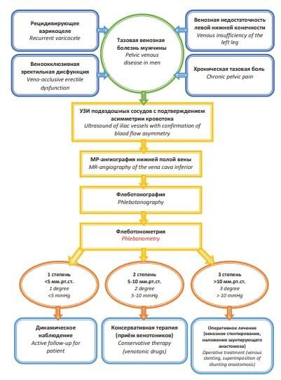 Алгоритм ведения пациентов с синдромом Тернера