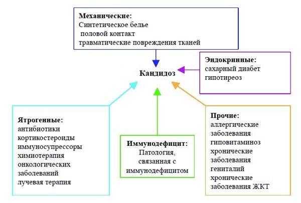 Факторы, провоцирующие активность грибка кандиды