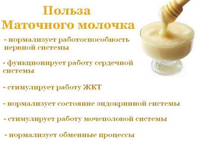 Польза маточного молочка