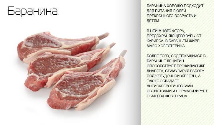 Полезные свойства баранины